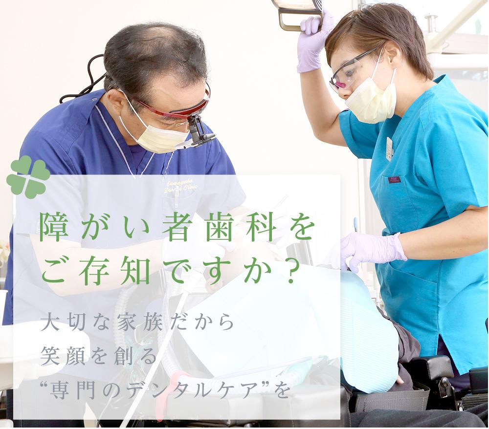 沖縄歯科医師会の活動 県民のみなさまの歯の健康を支えるため、様々な活動を行っております