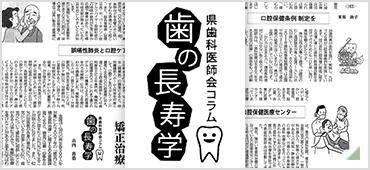 沖縄タイムス「歯の長寿学」